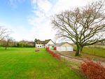 Thumbnail for sale in Hurst Dene Cottage, Moreton