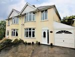 Thumbnail for sale in Barnfield Road, Paignton