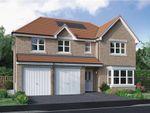 "Thumbnail to rent in ""Kinnaird"" at East Calder, Livingston"