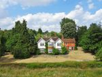 Thumbnail for sale in The Thicket, Maidenhead