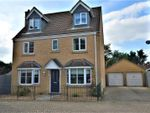 Thumbnail to rent in Collyns Way, Collyweston, Stamford