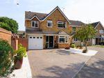 Thumbnail to rent in Woodrush Road, Purdis Farm, Ipswich