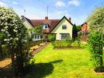 Thumbnail for sale in Kettering Road, Abington, Northampton