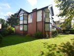Thumbnail for sale in New Hall Avenue, Salford