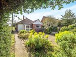 Thumbnail for sale in Oak Lane, East Ruston, Norwich