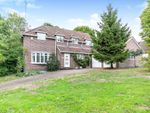 Thumbnail to rent in Woodlands, Colchester