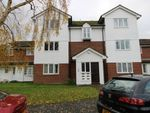 Thumbnail to rent in Grebe Road, Bridgwater