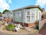 Thumbnail to rent in Grove Park, Magazine Lane, Wisbech