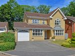 Thumbnail to rent in Tunnel Wood Road, Watford, Hertfordshire