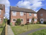 Thumbnail to rent in Calthorpe Close, Stalham, Norwich