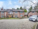 Thumbnail to rent in Prince Albert Drive, Ascot
