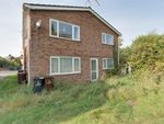 Thumbnail for sale in Old Heath Road, Colchester