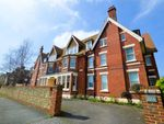 Thumbnail to rent in Grange Road, Eastbourne