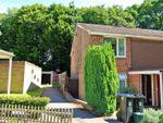 Thumbnail to rent in Wansford Green, Woking