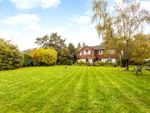 Thumbnail for sale in Ballards Lane, Oxted, Surrey