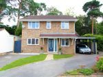 Thumbnail for sale in Hayes Barton, Pyrford, Woking