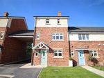 Thumbnail to rent in Hollinwood Homes, Whittingham Place, Broughton