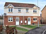 Thumbnail to rent in Stein Terrace, Ferniegair, Hamilton, South Lanarkshire