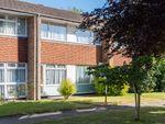 Thumbnail to rent in Somner Close, Canterbury