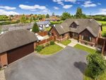 Thumbnail to rent in Holt Heath, Worcester