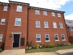 Thumbnail for sale in Cordwainer Close, Sprowston, Norwich