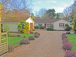 Thumbnail for sale in Higher Way, Harpford, Sidmouth