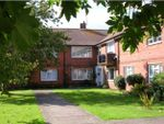 Thumbnail to rent in Meadow Way, Littlehampton