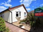 Thumbnail to rent in Freshwater Drive, Paignton