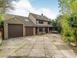 Thumbnail for sale in Hillborough Grove, Walderslade, Chatham