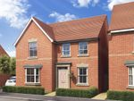 """Thumbnail to rent in """"Holden"""" at Brogdale Road, Ospringe, Faversham"""