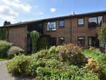 Thumbnail for sale in 23 Roding Close, Elmbridge Village, Cranleigh, Surrey