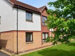 Thumbnail to rent in Gascoigne Court, Falkirk