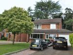 Thumbnail to rent in Bramble Bank, Frimley Green, Camberley