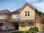 "Thumbnail to rent in ""The Newton"" at Markle Grove, East Rainton, Houghton Le Spring"