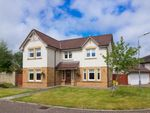 Thumbnail to rent in Dunbar Drive, Motherwell