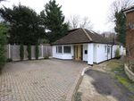 Thumbnail for sale in Beech Tree Glade, Chingford, London