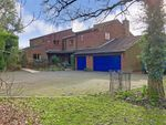 Thumbnail for sale in Spear Hill, Ashington, West Sussex