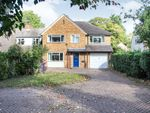 Thumbnail to rent in Wilbury Road, Letchworth Garden City
