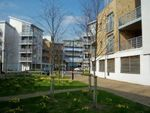 Thumbnail for sale in Kingfisher Meadow, Hart Street, Maidstone, Kent