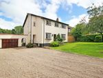 Thumbnail for sale in Oxenden Wood Road, Orpington