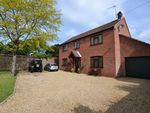 Thumbnail for sale in Dawes Lane, Snettisham, King's Lynn