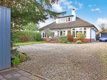 Thumbnail to rent in St. Hildas Road, Harrogate