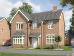 """Thumbnail to rent in """"The Birch"""" at Park Road, Hellingly, Hailsham"""