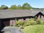Thumbnail to rent in Capel Dewi, Aberystwyth