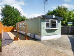 Thumbnail to rent in Werrington Grove, Werrington, Peterborough