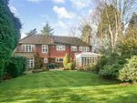 Thumbnail to rent in Smitham Bottom Lane, Purley