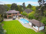 Thumbnail to rent in Orpington Road, Chislehurst