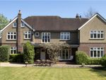 Thumbnail to rent in St. Peter's Avenue, Caversham Heights, Reading