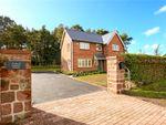 Thumbnail to rent in Barton Road, Barton, Malpas, Cheshire