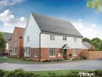 """Thumbnail to rent in """"Cornell"""" at Barnhorn Road, Bexhill-On-Sea"""
